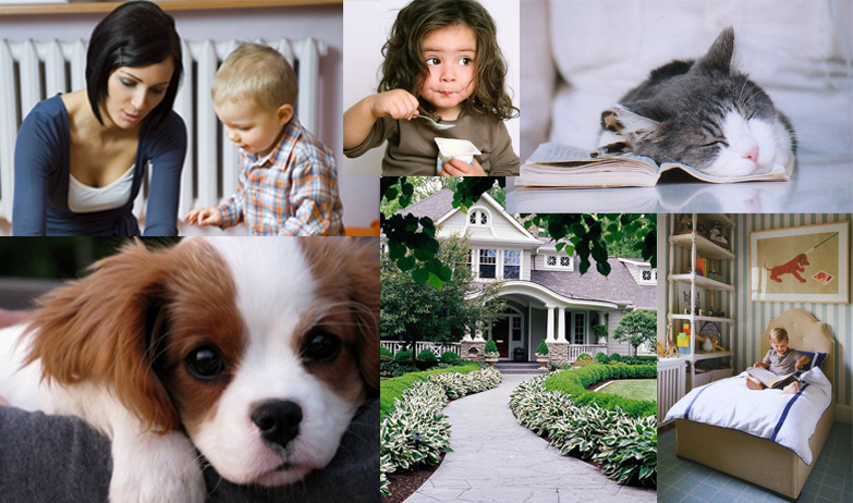 sitters on park winter park fl babysitter pet sitter house
